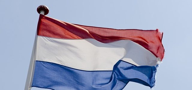 Things You Should Know When You Need A Dutch Translator For Your Website