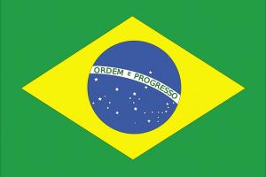 Brazilian Translator